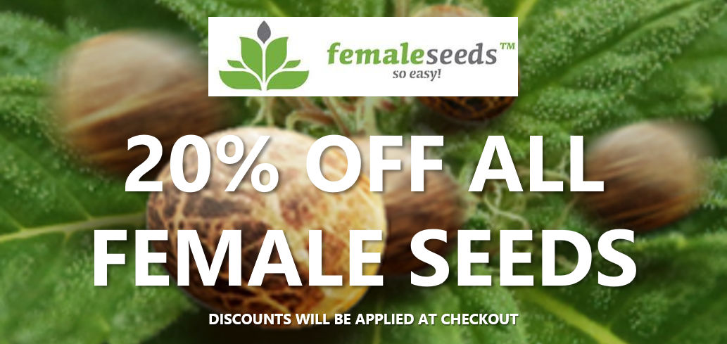 Female Seeds | Discount Cannabis Seeds