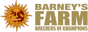 Barney's Farm Seeds from Discount Cannabis Seeds