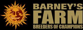 Barney's Farm Seeds Review - Discount Cannabis Seeds