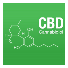 CBD Seeds at Discount Cannabis Seeds