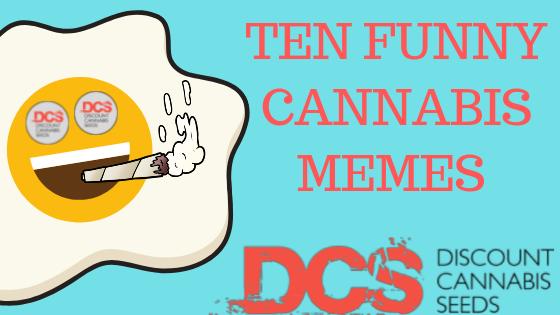 Cannabis Memes - Discount Cannabis Seeds