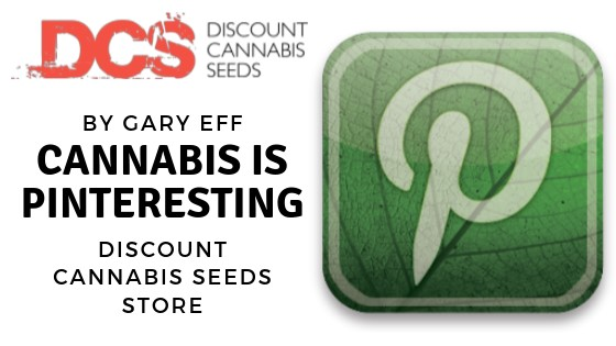 Cannabis is Pinteresting - Discount Cannabis Seeds