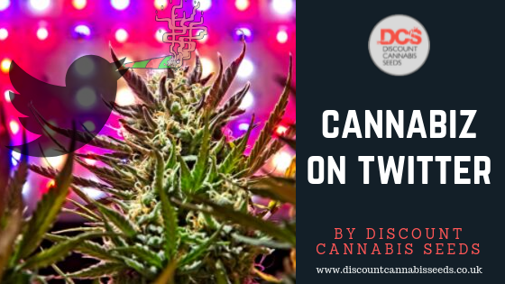 Cannabis on Twitter - Discount Cannabis Seeds
