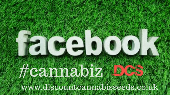Cannabis on Facebook - Discount Cannabis Seeds