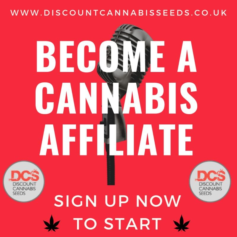 Affiliate Scheme - Discount Cannabis Seeds