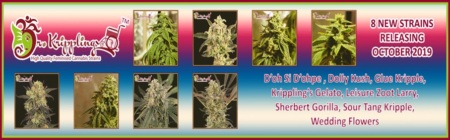 Dr Krippling New Strains - Discount Cannabis Seeds