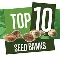 Cannabis Seeds Bank Reviews - Discount Cannabis Seeds.