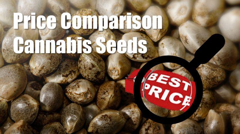 Bulk Seeds Review - Discount Cannabis Seeds