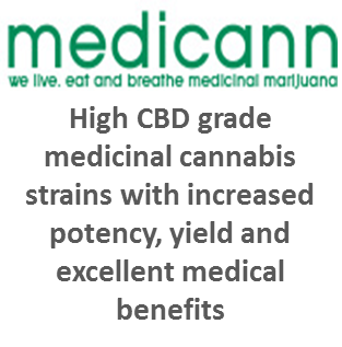 Medicann Seeds - Discount Cannabis Seeds