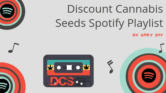 Music to Get High to - Discount Cannabis Seeds