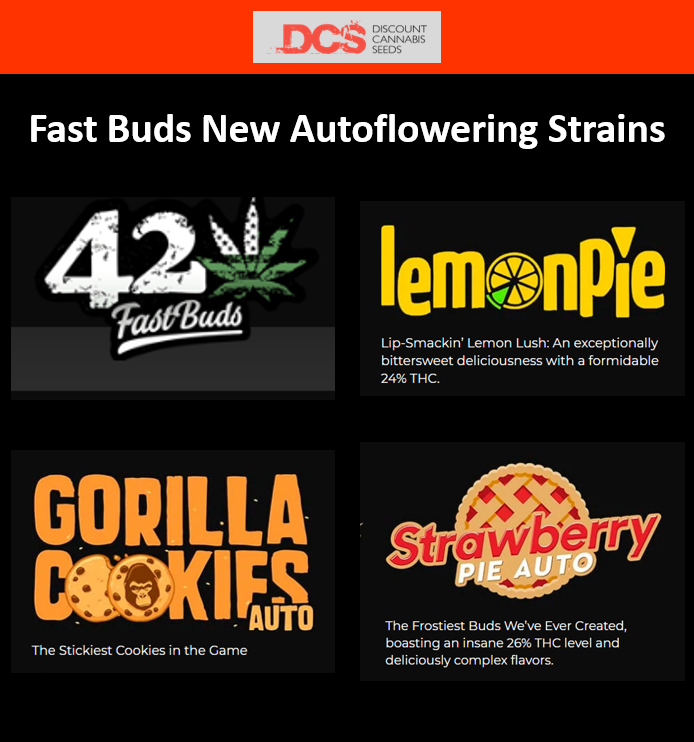 New Strains from Fast Buds - Discount Cannabis Seeds