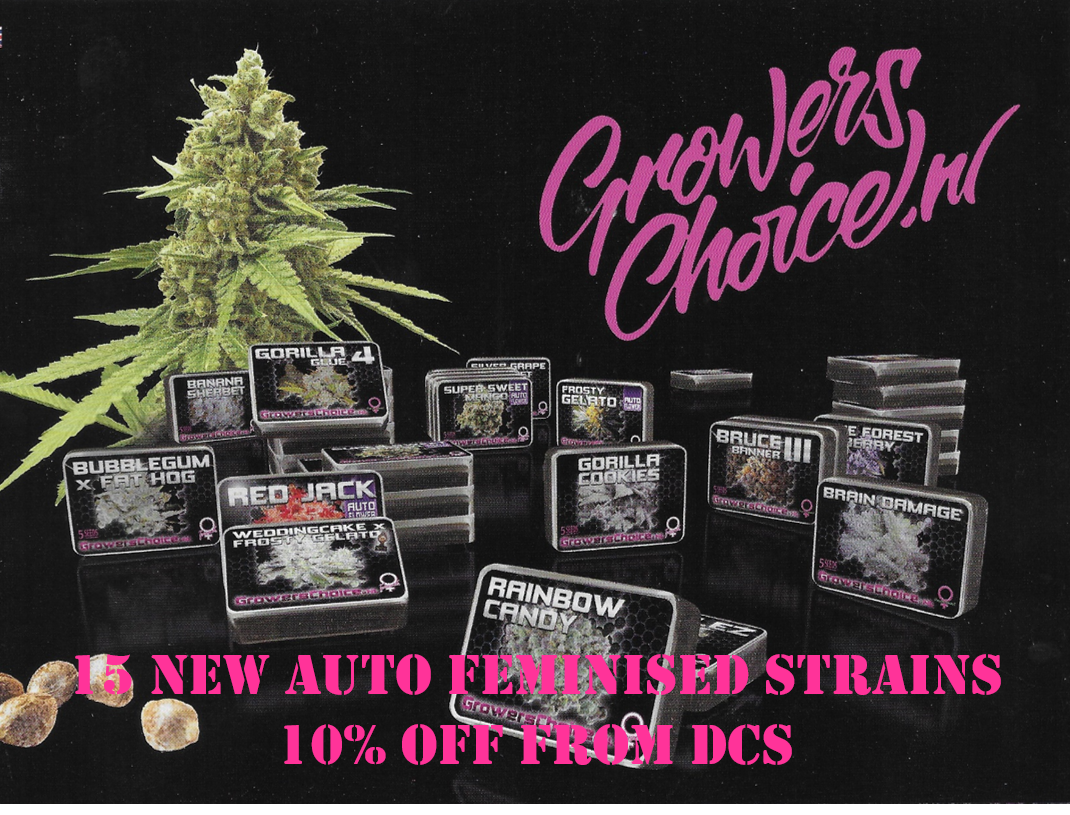 Growers Choice Seeds from Discount Cannabis Seeds