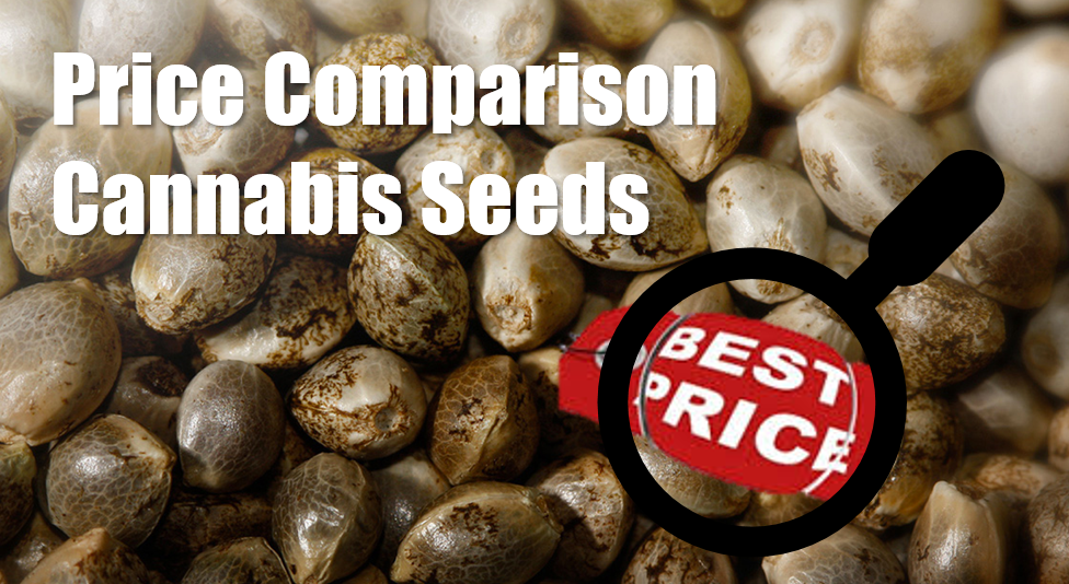 Price Comparison Cannabis Seeds | Discount Cannabis Seeds
