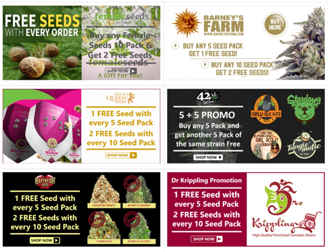Promotions and Special Offers - Discount Cannabis Seeds