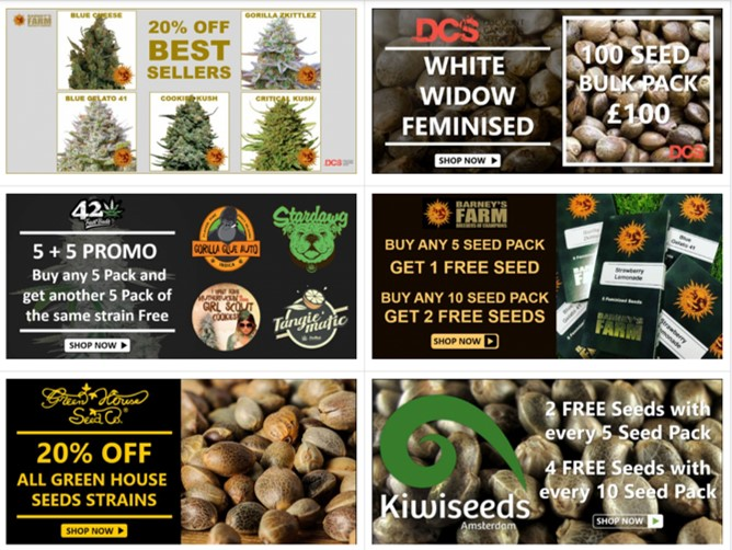 Promotions and Offers - Discount Cannabis Seeds