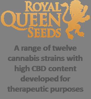 Cannabis seeds coupon - Coupons for flipkart pen drives