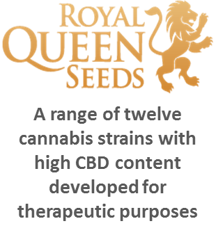 Royal queen Seeds - Discount Cannabis Seeds