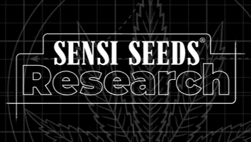 Sensi Seeds Research - Discount Cannabis Seeds