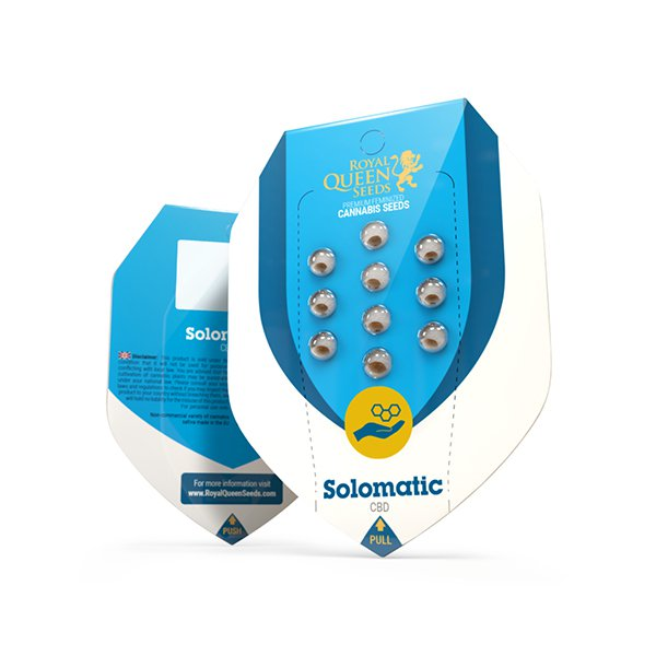 Solomatic CBD Auto - Discount Cannabis Seeds
