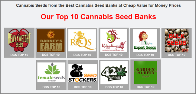 Top 10 Cannabis Seed Banks - Discount Cannabis Seeds