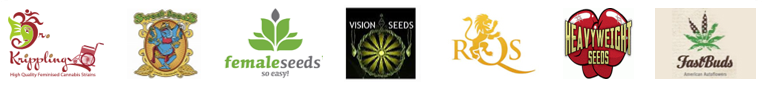 Best Cannabis Seeds | Discount Cannabis Seeds
