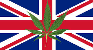 A review of UK Cannabis scene by Discount Cannabis Seeds