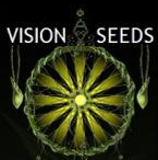 Vision Seeds Strain Reviews - Discount Cannabis Seeds.