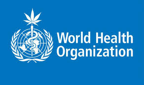 World Health Organisation | CBD | Discount Cannabis Seeds