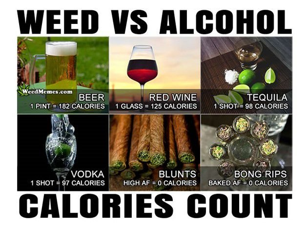Weed v Alcohol - Discount Cannabis Seeds