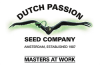 Dutch Passion Seeds Review - Discount Cannabis Seeds