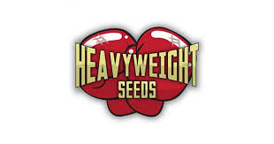 6 new seeds By Heavyweight Seeds Review