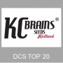 KC Brains Weed Seeds Logo