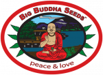 Big Buddha Cannabis Seeds   Discount Cannabis Seeds