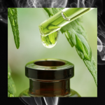 CBD - Discount Cannabis Seeds