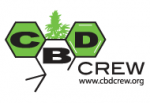 CBD Crew Seeds | Discount Cannabis Seeds