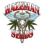 Hazeman Seeds   Discount Cannabis Seeds