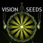 Vision Seeds | Discount Cannabis Seeds