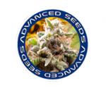 Advanced Seeds | Discount Cannabis Seeds