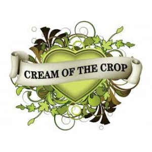Cream of the Crop Seeds | Discount Cannabis Seeds