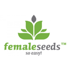 Female Seeds Feminised Cannabis Seeds | Discount Cannabis Seeds