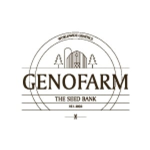 Genofarm Seeds | Discount Cannabis Seeds