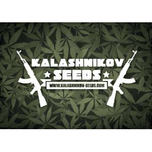 Kalashnikov Seeds | Discount Cannabis Seeds