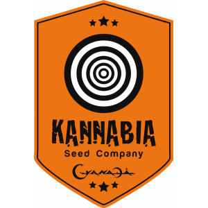 Kannabia Seeds | Discount Cannabis Seeds