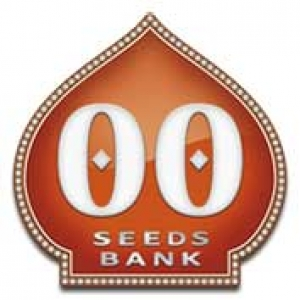 OO Seeds | Discount Cannabis Seeds