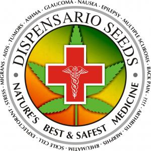 Dispensario Seeds | Discount Cannabis Seeds