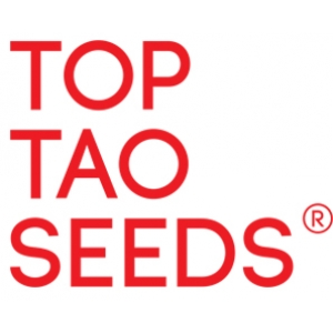 Top Tao Seeds | Discount Cannabis Seeds