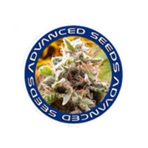 Advanced Seeds | Discount Cannabis Seeds