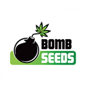 Bomb Seeds | Discount Cannabis Seeds