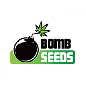 Bomb Seeds | Discount Cannabis Seeds