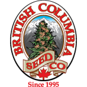 British Columbia Seed Company | Discount Cannabis Seeds